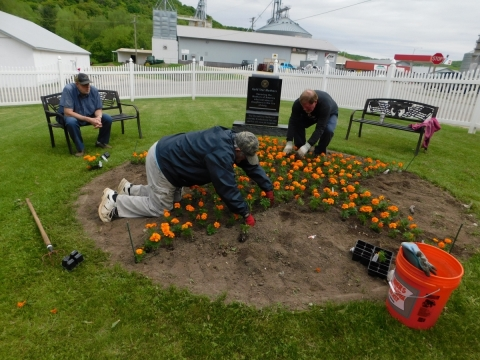 Planting the Gold Star Mother Garden