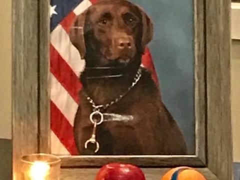 Jypsy Army Veteran Dog is Honored